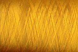 150 Den  500meter   Gold 1 cone
